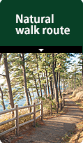 Natural walk route